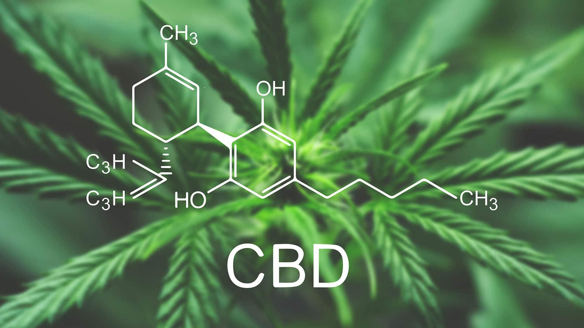 Ace Drops Premium CBD chemical composition backdrop image