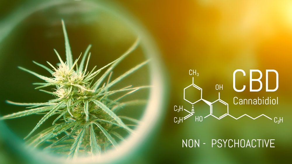 CBD Treatments for anxiety background image